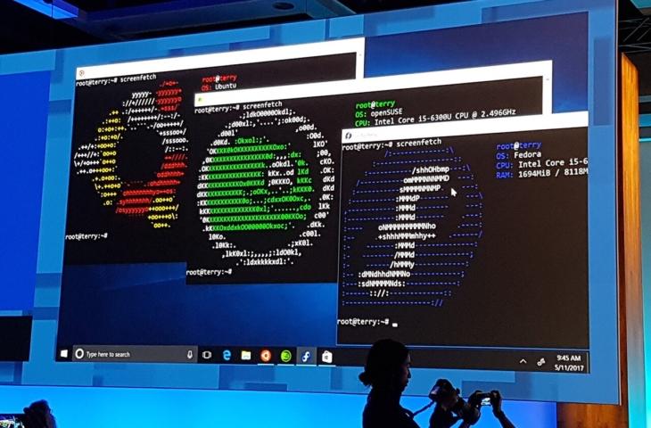 linux-windows10